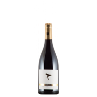 Allemagne Pfalz Pinot Noir Trocken
