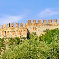 Domaine Dal Cero