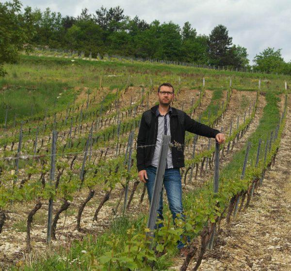 gerald-dubreuil-vigne.jpg