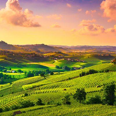 VINS ITALIENS – la région de Frioul à l'honneur