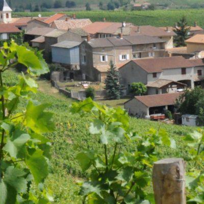 Accords Mets et Vins / Menu de la soirée vigneronne Domaine Cheveau au restaurant les Plats Canailles de la Bleue Maison
