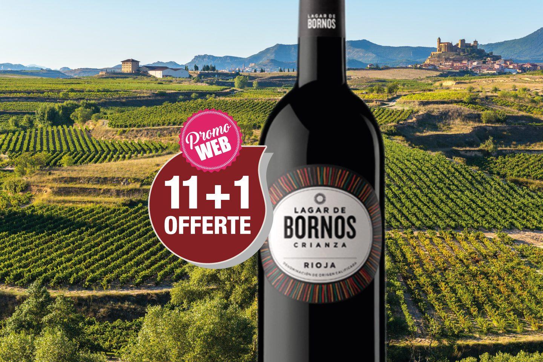 Offre spéciale Web : Espagne Rioja 2015