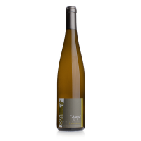Alsace Pinot Gris 2018