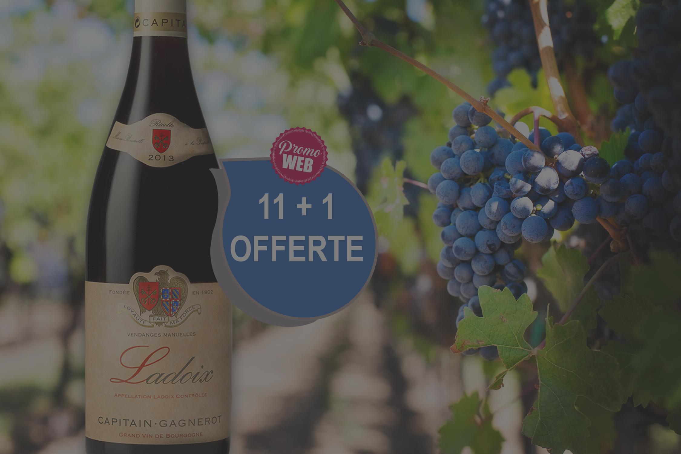 Offre spéciale Web : Ladoix Rouge 2018 D. Capitain Gagnerot