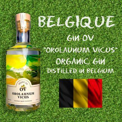 Belgique Gin.jpg