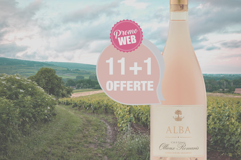 Offre Spéciale Web : Corbières Rosé