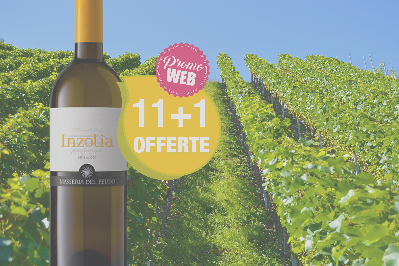 Offre spéciale Web : Italie DOC Sicilia 2018 Inzolia